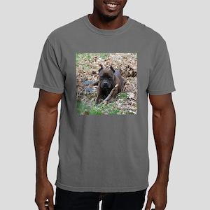 ruby Mens Comfort Colors Shirt