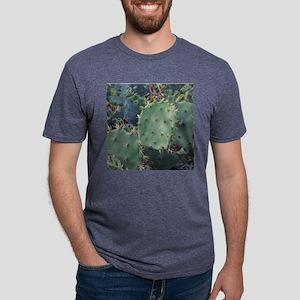 Cacti10x10 Mens Tri-blend T-Shirt