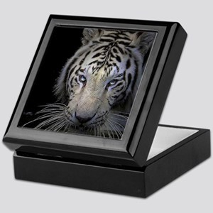 White Tiger Stalking Keepsake Box