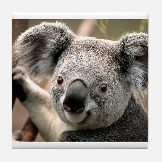 Koala Tile Coaster