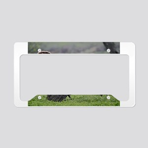The Meeting License Plate Holder