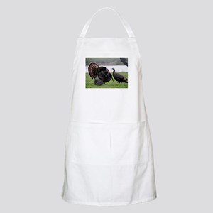 The Meeting Apron
