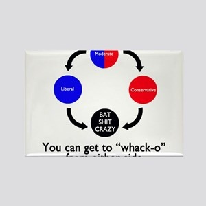 The Truth about Political Views Rectangle Magnet