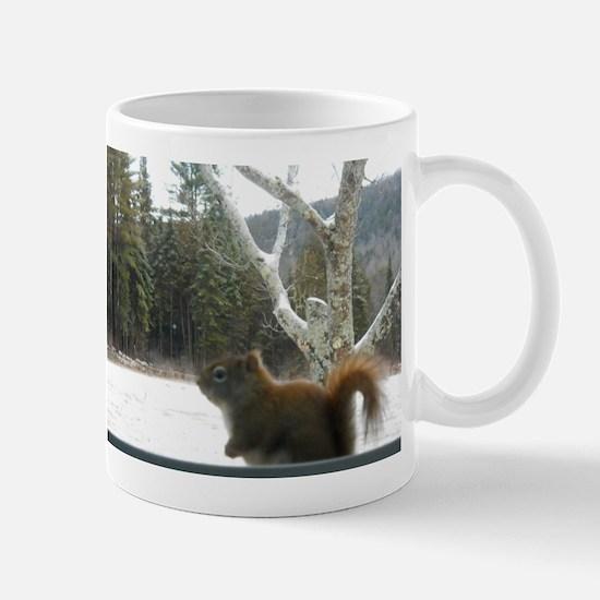 No Birds Allowed Mug