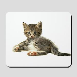 """Cute Tabby Kitten """"Meow"""" Mousepad"""