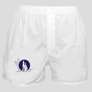 Southwest Boxer Shorts