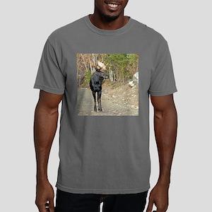 3.5x3 Mens Comfort Colors Shirt