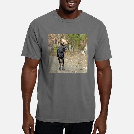 3.5x3.png Mens Comfort Colors Shirt