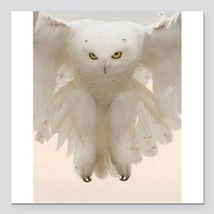 """Ghost Owl Square Car Magnet 3"""" x 3"""""""
