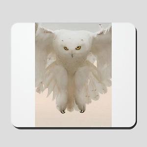 Ghost Owl Mousepad