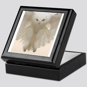 Ghost Owl Keepsake Box