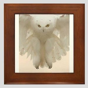 Ghost Owl Framed Tile