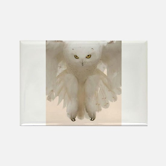 Ghost Owl Rectangle Magnet