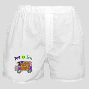 Groovy Van Boxer Shorts