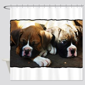 Boxer puppies Shower Curtain