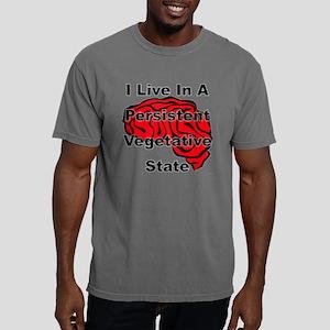 state Mens Comfort Colors Shirt