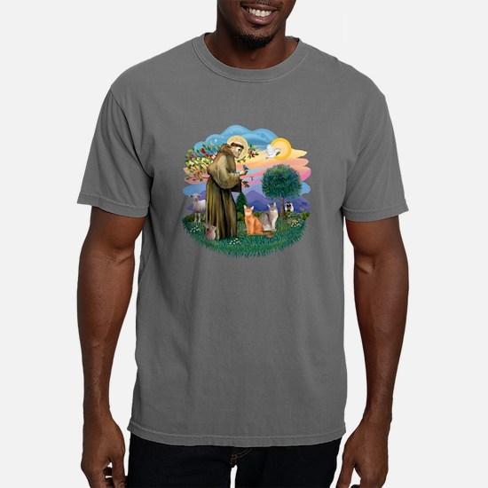 St Francis (ff) - Abyssi Mens Comfort Colors Shirt