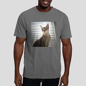 big eyed cat 16x16 Mens Comfort Colors Shirt