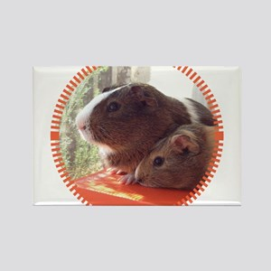 2 Guinea Pigs Rectangle Magnet