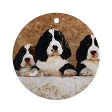 English Springer Spaniel Puppies (1) Ornament (Rou