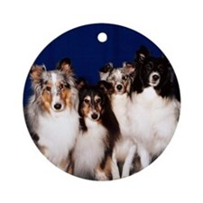Shelties (photo) Ornament (Round)