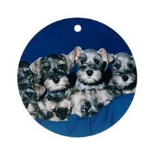 Schnauzer Puppies Ornament (Round)