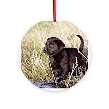 Black Lab Puppy Ornament (Round)