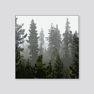 "Misty pines Square Sticker 3"" x 3"""