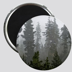 Misty pines Magnet
