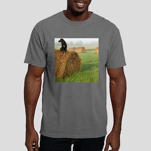 dog612sq Mens Comfort Colors Shirt