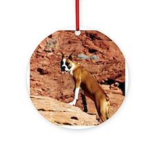 Boxer (photo) Ornament (Round)