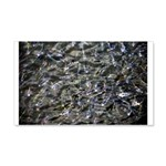 Shad in Fall Colors 20x12 Wall Decal