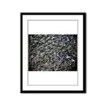 Shad in Fall Colors Framed Panel Print