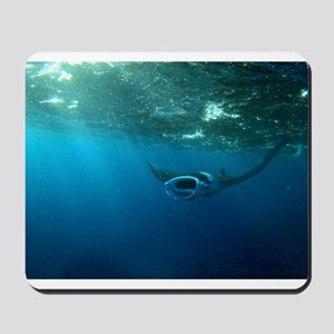 Manta Ray Swims in the water Mousepad