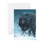 Our Path Greeting Cards (Pk of 20)