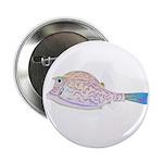 Cowfish fish 2.25