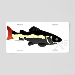 Redtailed Catfish (Audreys Amazon River) Aluminum