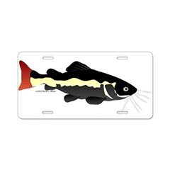 Redtailed Catfish (Audreys Amazon River) Aluminum
