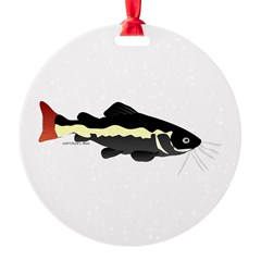 Redtailed Catfish (Audreys Amazon River) Ornament