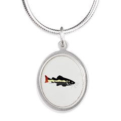 Redtailed Catfish (Audreys Amazon River) Silver Ov