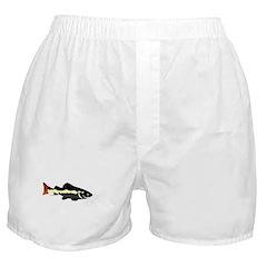 Redtailed Catfish (Audreys Amazon River) Boxer Sho