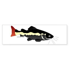 Redtailed Catfish (Audreys Amazon River) Bumper Sticker