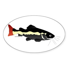 Redtailed Catfish (Audreys Amazon River) Decal