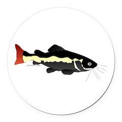 Redtailed Catfish (Audreys Amazon River) Round Car