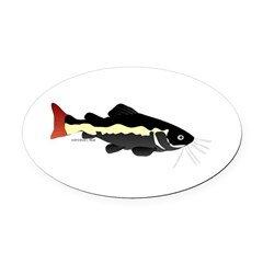Redtailed Catfish (Audreys Amazon River) Oval Car