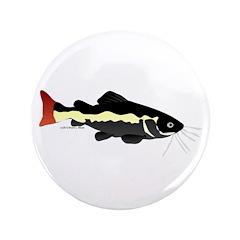 Redtailed Catfish (Audreys Amazon River) 3.5