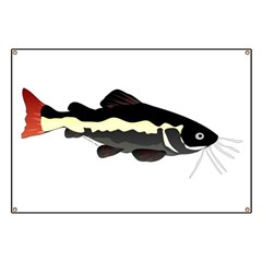 Redtailed Catfish (Audreys Amazon River) Banner