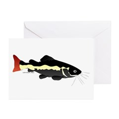 Redtailed Catfish (Audreys Amazon River) Greeting