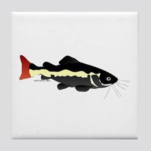 Redtailed Catfish (Audreys Amazon River) Tile Coas