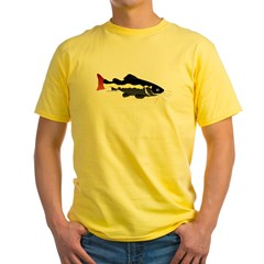 Redtailed Catfish (Audreys Amazon River) T